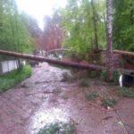 От урагана пострадал дом главного редактора «МК» Павла Гусева