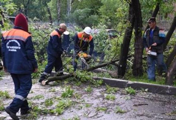 В МЧС объяснили, почему не разослали SMS-оповещения об урагане