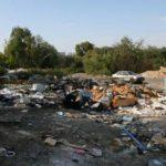 Штрафы за мусор предложено увеличить в разы