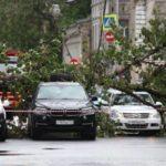 Как и с кого получить деньги за поврежденный ураганом автомобиль
