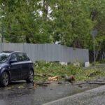 Спасатели оценили последствия урагана в Москве