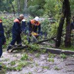 Ураган в Москве: сотни поваленных деревьев, сбои в метро, 11 погибших