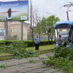 В Москве ожидается прохладная погода с дождями до конца недели