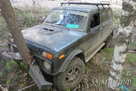 Попытался покинуть Омск: украл две машины, разбил обе, уснул в лесу