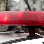 В Ленинградской области нашли тело 11-летнего мальчика
