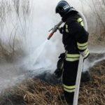 В Бурятии локализовали лесной пожар, угрожавший одному из поселков