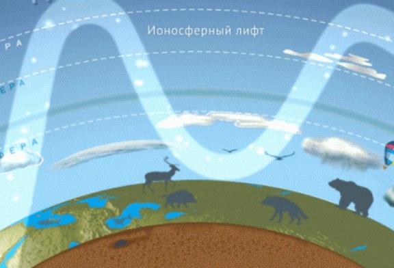 Где проходят границы распространения живых организмов на Земле?