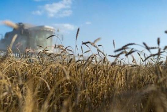 Россия заявила о готовности увеличить поставки сельхозпродукции в Катар
