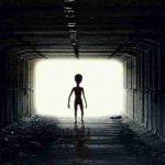 Ученые NASA вознамерились найти инопланетян в ближайшие 20 лет