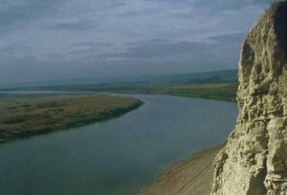 Сенсационное открытие российских ученых: Якутия была тропиками в эпоху динозавров