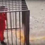 Боевики ИГ заживо сожгли попавшего в плен летчика