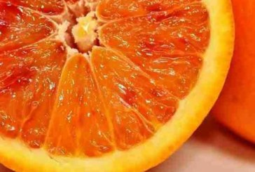 К чему ведет недостаток и переизбыток витаминов весной