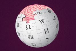 Информационный портал «Википедия» приостановил работу, пользователям оказались недоступны итальянская, испанская, латышская и польская версии портала