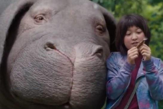 Брэд Питт и компания подложили Каннскому кинофестивалю корейскую свинью